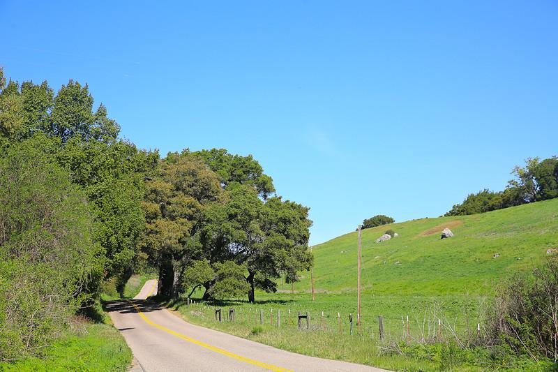 websize_Old Creek Road in Spring-0812.jpg