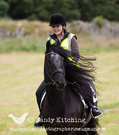 Cath & Kelly Friesian Hack Jul 2015