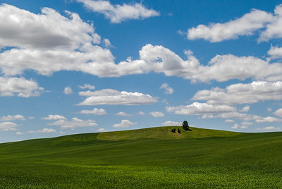 Palouse region near Spokane, WA