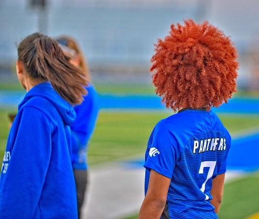Lady Panthers Varsity vs  Sam Houston Texans  03-19-19 copy7