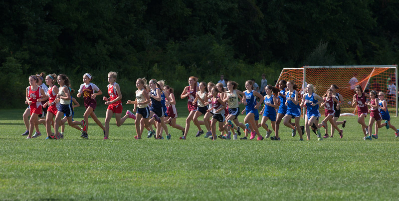 Bexley MS Cross Country New Albany 2015