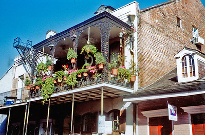 new orleans&mississippi