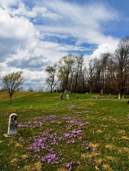 Forgetmenots-cemetery-hartville.jpg