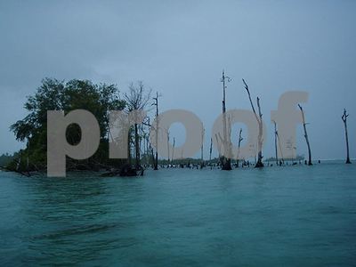 climate-change-blamed-after-the-pacific-ocean-swallows-five-solomon-islands