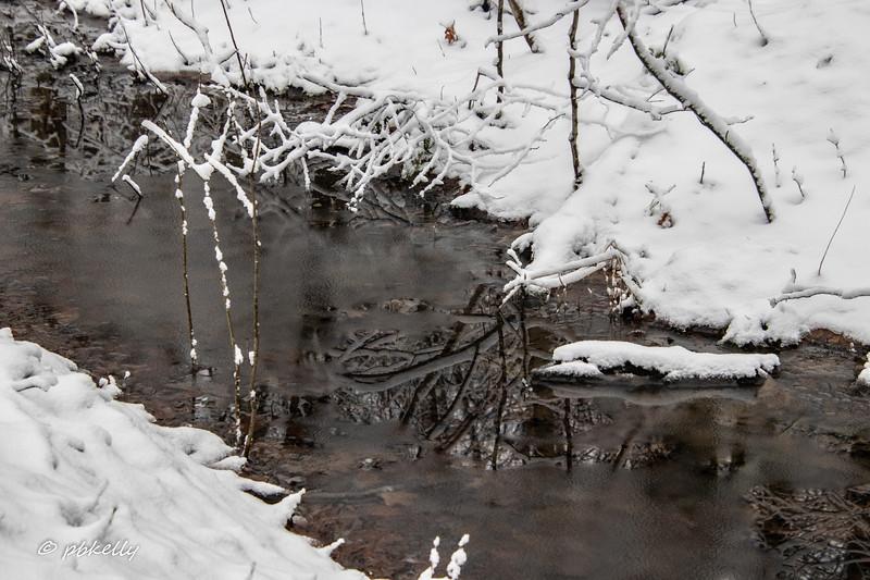 water 012710-7.jpg