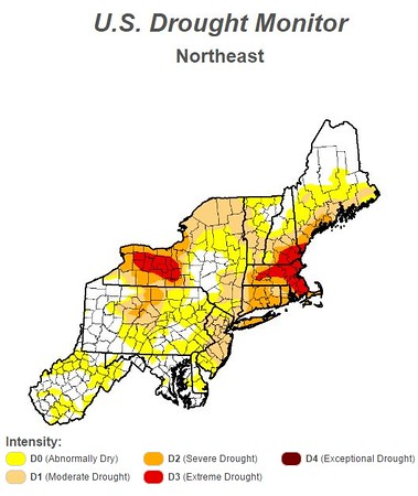 U.S. Drought Monitor, Northeast