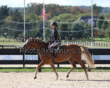 Saturday:  Children's Hunter Pony