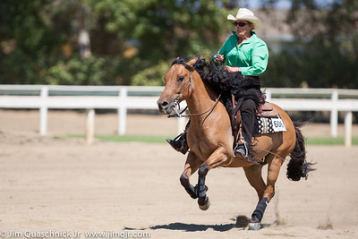 Brookside Summer Rein Horse ShowAug 22 - 25, 2013  Friday