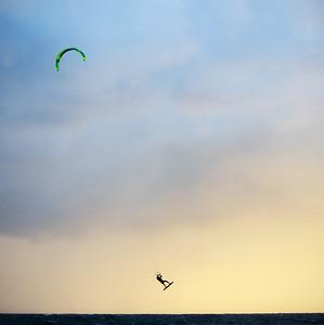 Elaine Whitton - Dusk flight