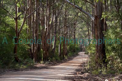 Australia -Margaret River
