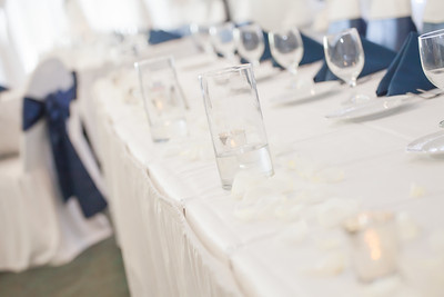 Zoetemelk Wedding - Reception