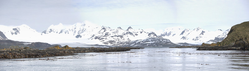 Prion Island i3.jpg