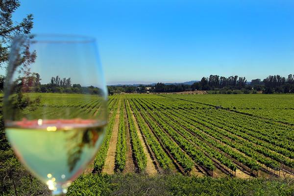 Kendall Jackson Family Wines & La Crema Winery