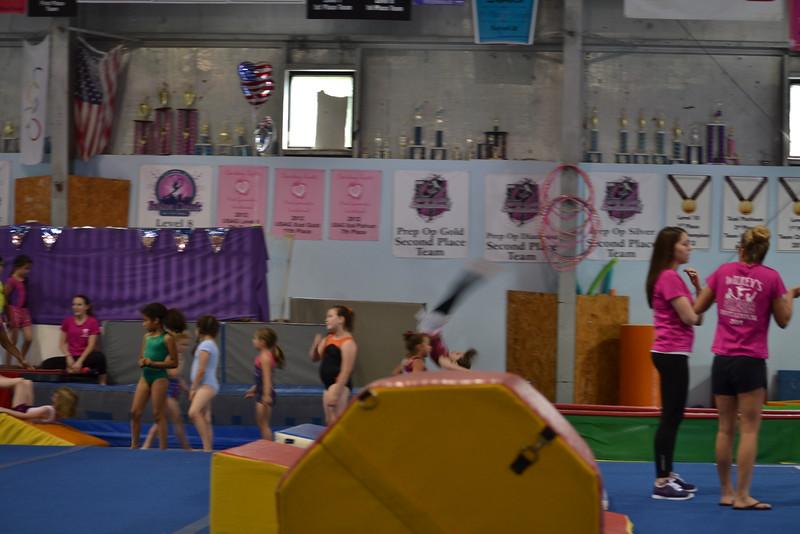 2014 June Gymnastics (6).JPG