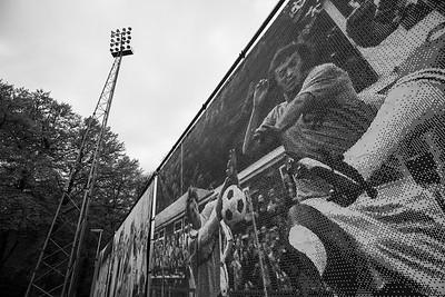 Stadion de Wageningse Berg