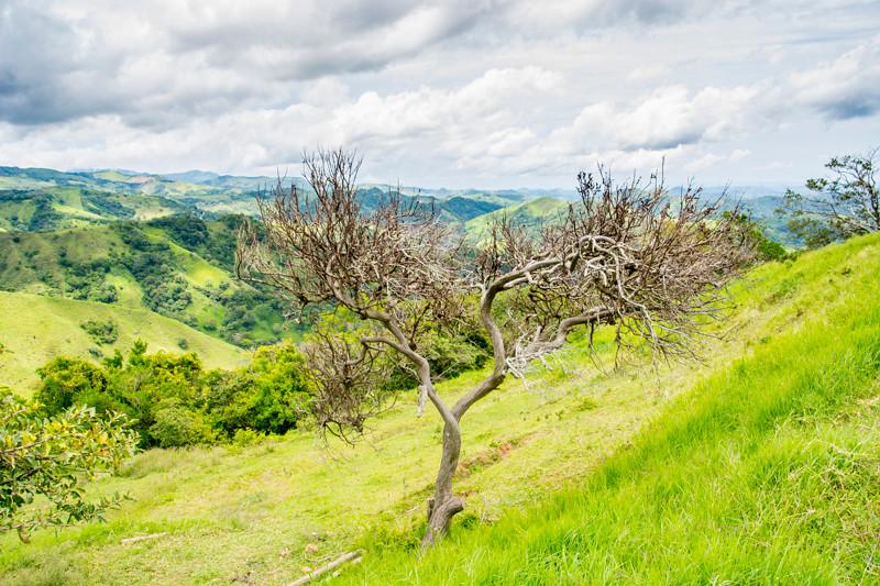 Costa Rica_Landscapes-7.jpg