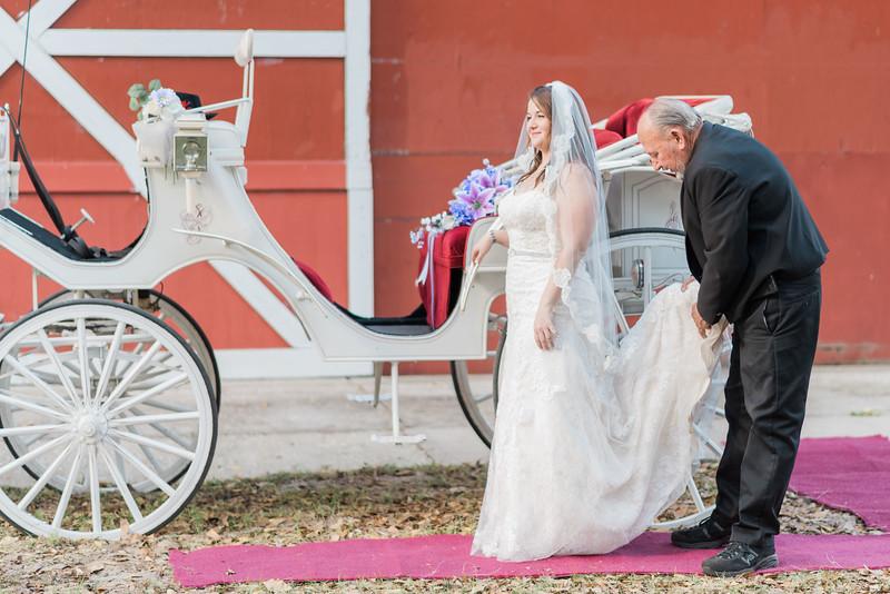 ELP0312 DeRoxtro Oak-K Farm Lakeland wedding-846.jpg