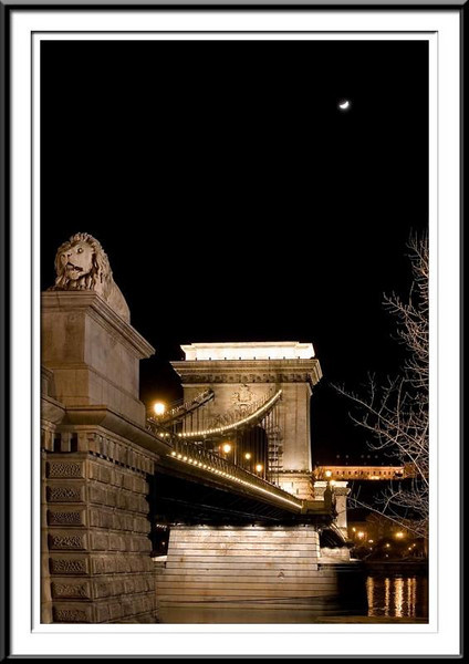 budapest-bridge (56495775).jpg