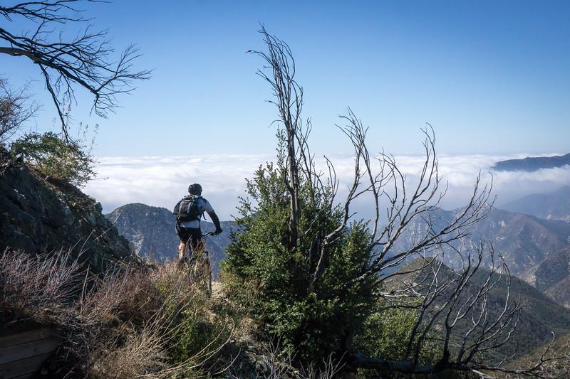 20181014115-Strawberry Peak, Gabrielino, CORBA_.jpg