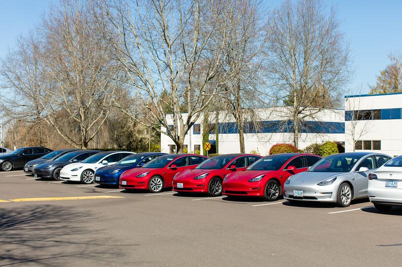 503Motoring_Tesla