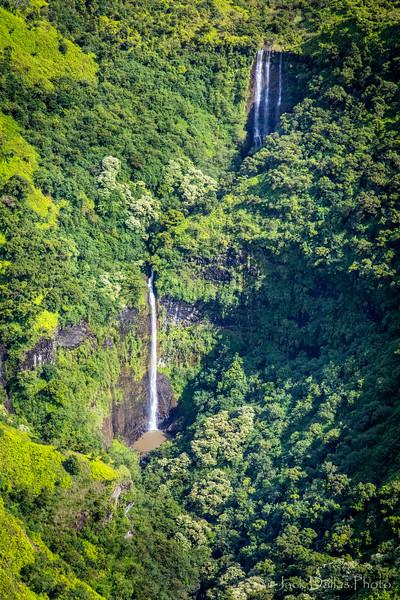 Kauai DF0A7958.jpg