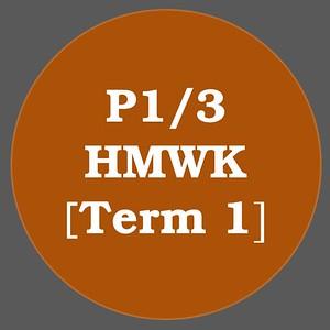P1/3 HMWK T1