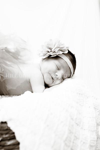 Hillary_Ferguson_Photography_Carlynn_Newborn194.jpg