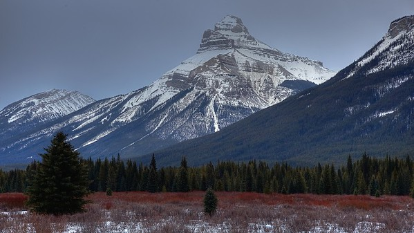 Bow Valley Parkway - Banff Park, Alberta