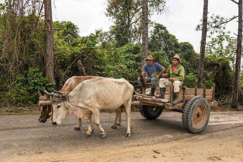 EricLieberman_D800_Cuba__EHL2783.jpg