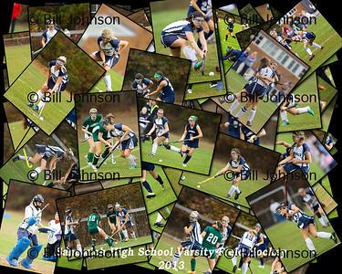 Sandwich V Field Hockey Collage 2013