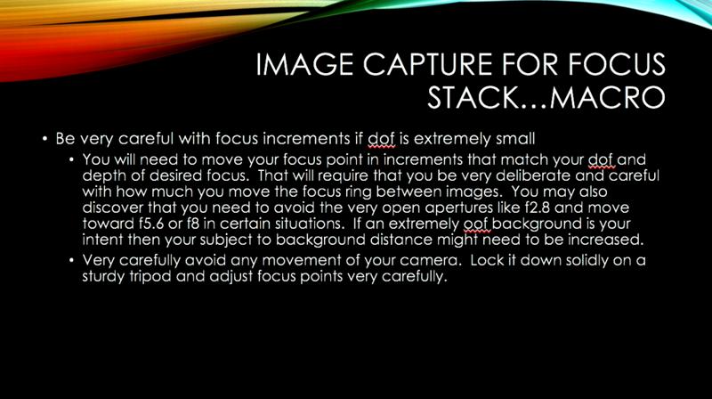 21 FOCUS STACK.jpg.png