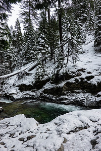 Icy Creek