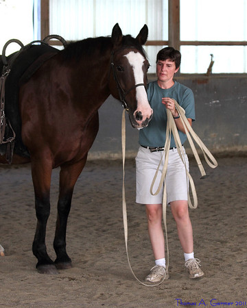 Equestrian Vaulting Camp 2011