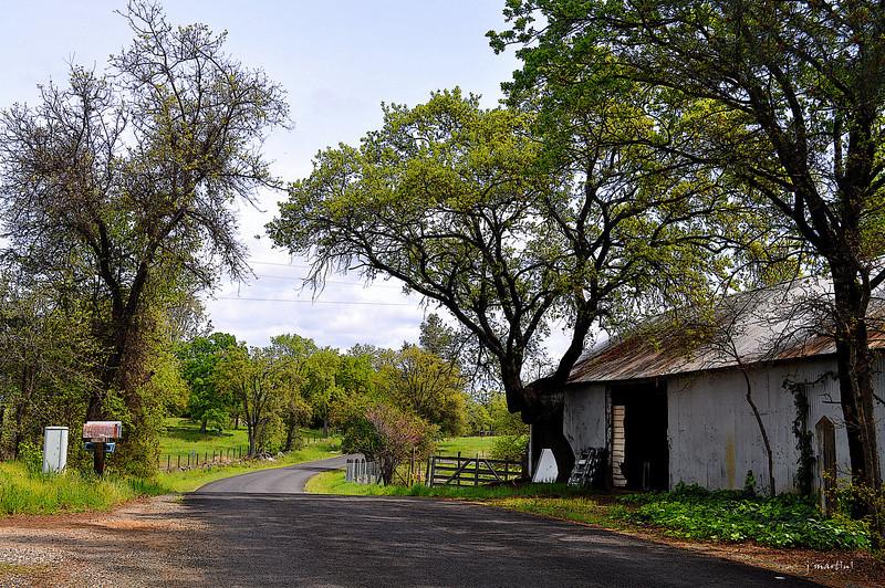 country lane 4-11-2013.jpg