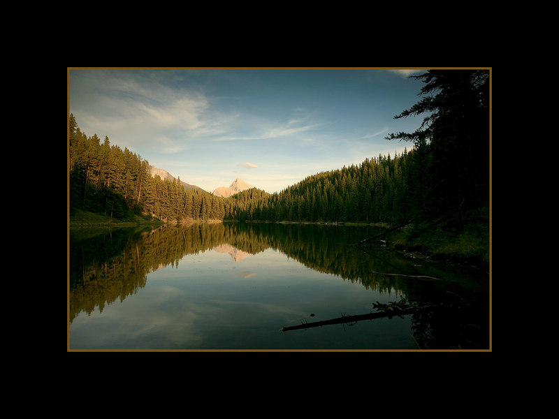 Moose Lake, Jasper National Park