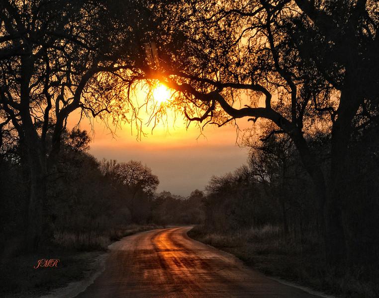 SUN ON A ROAD IN AFRICA .jpg