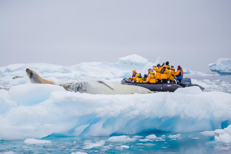 Facts about Antarctica - zodiac cruising