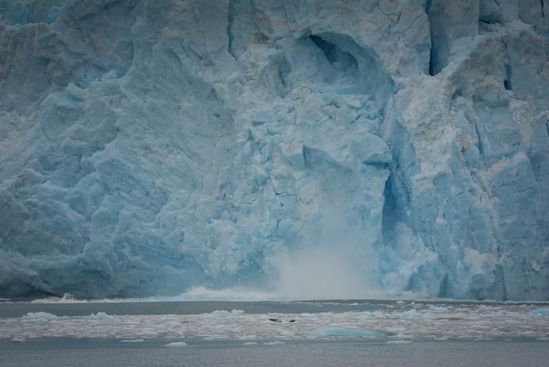 Kenai-Fjords-111.jpg