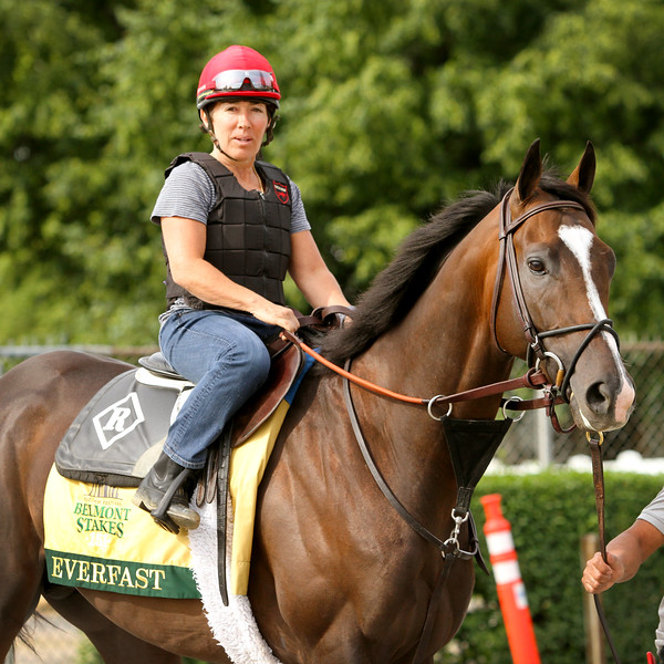 Everfast (Take Charge Indy) trains for the Belmont Stakes (Gr I) at Belmont Park 6/7/19. Trainer: Dale Romans. Owner: Calumet Farm