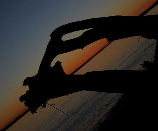 whidby sunset.jpg