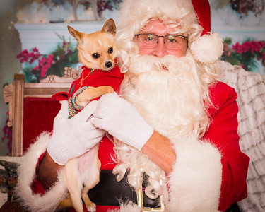 Santa Paws Nov & Dec 2018