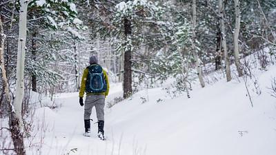 Basemap Tetons Snowshoeing