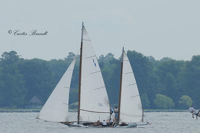 2010 Govenor's Cup Race - Miles River Yacht Club - August