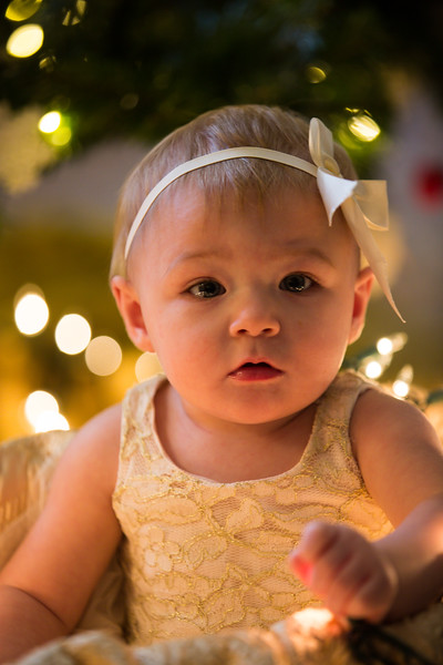 Leah Marie's First Christms 2018 (47).jpg