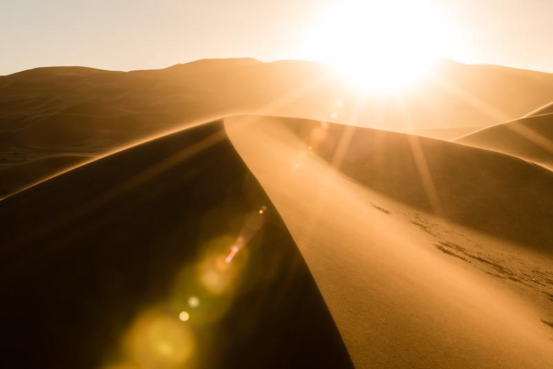 Sahara Contrast