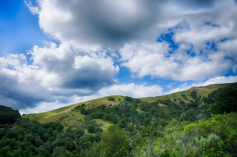 Lagunitas - Forest Knolls - Woodacre