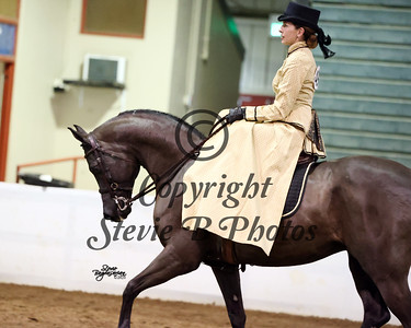 88.Arabian Ladies Side Saddle