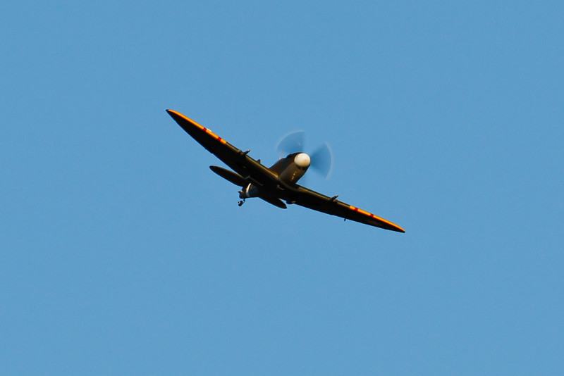 PZ_Spitfire_16.jpg