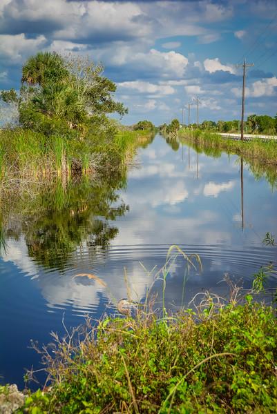 Everglades-42.jpg