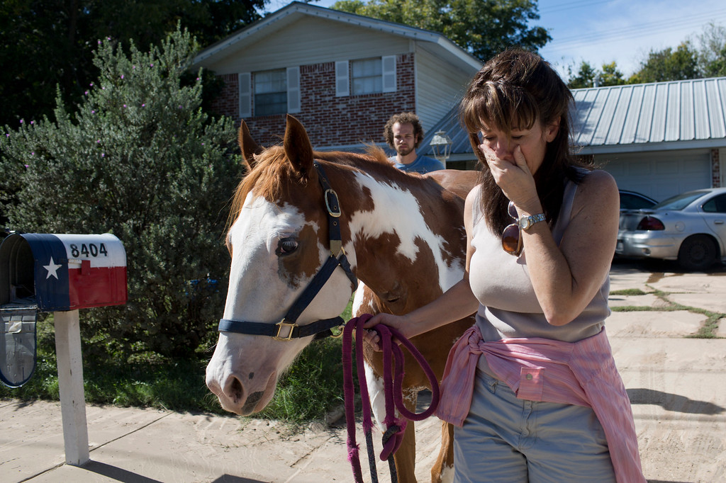 . Divy Nelson stands with her horse, Amala, as she waits for an update on the status of 12 missing horses, one of which is hers, that were displaced from the same ranch after heavy rains flooded parts of the neighborhood around Onion Creek on Thursday Oct. 31, 2013 in Austin, Texas. The National Weather Service said more than a foot of rain fell in Central Texas. (AP Photo/ Tamir Kalifa)